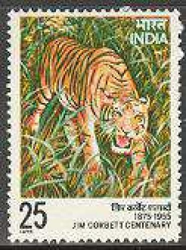 Jim Corbett 1v, tiger