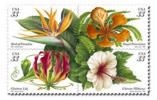 Stamps; Tropical Flower Stamps - USA; 33 cents