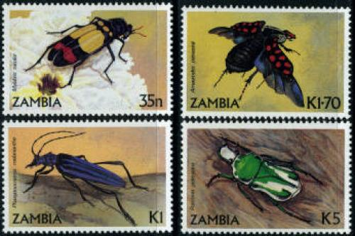 Beetles 4v; Year: 1986