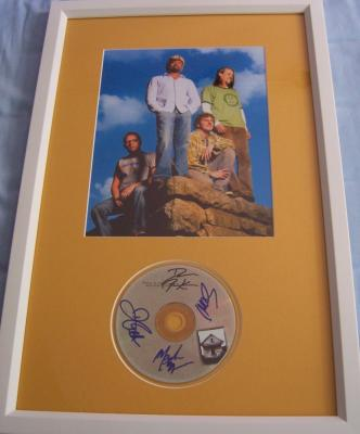 Hootie and the Blowfish autographed Cracked Rear View CD framed with 8x10 photo