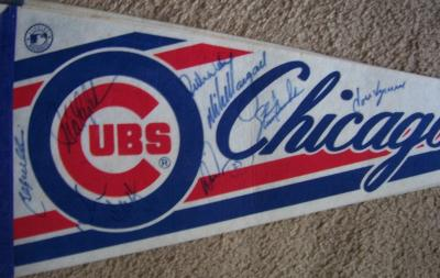 1993 Chicago Cubs autographed pennant (Jose Vizcaino Rick Wilkins Billy Williams)