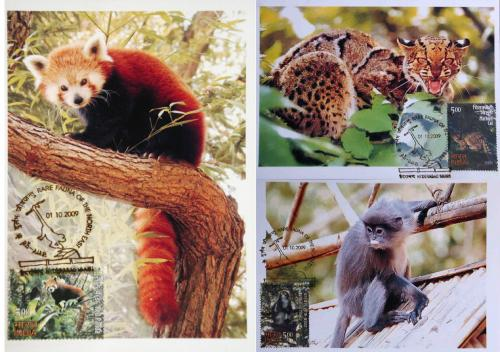 India Pvt Maxim Cards on Animals set of 3