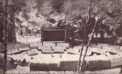 Redwood Park vintage early 1900s postcard
