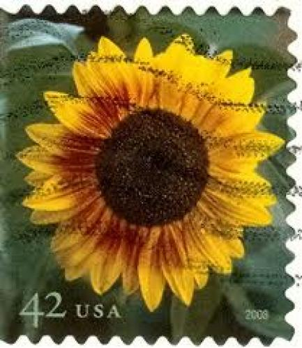Stamps;  USA - Stamp, 2008 sunflower 42c