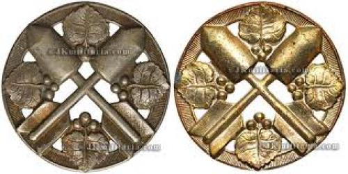 Czech and Slovak militaria, badges,