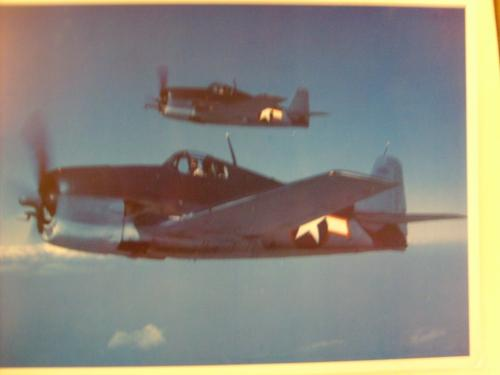 Grumman WW2 F6F Hellcat aircraft photo and data